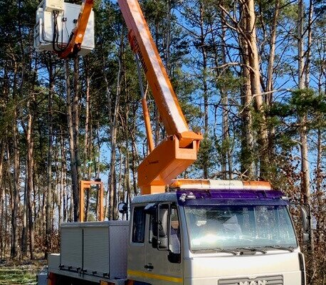Wycinka drzew w Poznaniu z podnośnika koszowego Ruthman
