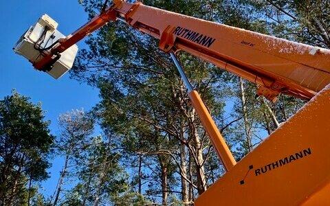 Wynajem podnośników Poznań - podnośnik Ruthmann Steiger tK 170 w lesie